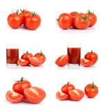 Insieme dei pomodori isolati su bianco Fotografia Stock
