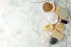 Insieme dei prodotti di pulizia naturali ecologici, spazzola del metallo, limone, bicarbonato di sodio del bicarbonato di sodio,  fotografia stock