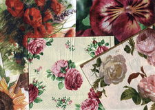 Insieme dei reticoli floreali ornamentali decorativi Immagini Stock