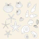 Insieme dei sea-shells tirati Fotografia Stock
