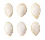Insieme dei semi di zucca salati Fotografia Stock