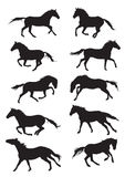 Insieme dei silouettes dei cavalli di vettore Fotografie Stock Libere da Diritti