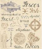 Insieme dei simboli per i pesci o il pesce del segno dello zodiaco Fotografia Stock