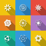 Insieme dei tasti floreali Fotografia Stock Libera da Diritti