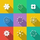 Insieme dei tasti floreali Immagine Stock