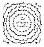 Insieme dei telai floreali, corona Vector le spazzole Fotografia Stock Libera da Diritti