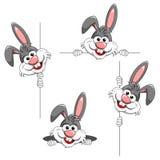 Insieme del carattere del fumetto o della sbirciata divertente del coniglio della mascotte un behin di fischio Fotografia Stock