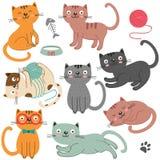 Insieme del carattere isolato dei gatti illustrazione vettoriale