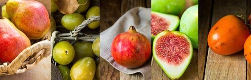 Insieme del collage delle pere organiche mature di frutti di caduta di autunno, melograni, fichi, cachi, prugne gialle Raccolto,  Fotografia Stock