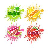 Insieme del concetto di prodotti di fattoria naturale dell'alimento del fondo fresco di Juice Logo Fruits Over Paint Splash illustrazione vettoriale