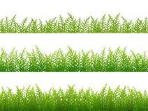 Insieme del confine senza cuciture dell'erba Immagini Stock