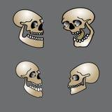 Insieme del cranio di Halloween Fotografia Stock Libera da Diritti