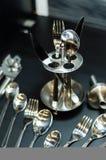 Insieme del cucchiaio d'argento Fotografia Stock Libera da Diritti