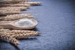 Insieme del cucchiaio di legno con le orecchie del grano e della segale della farina Fotografia Stock