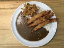Insieme del curry della tempura Immagini Stock Libere da Diritti
