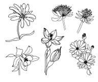 Insieme del fiore della molla doodles illustrazione di stock