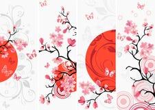Insieme del fiore di ciliegia Fotografia Stock
