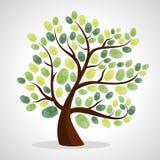 Insieme del fondo dell'albero delle impronte digitali Immagine Stock Libera da Diritti