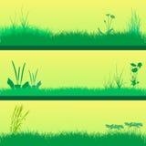 Insieme del fondo dell'erba verde Immagine Stock Libera da Diritti