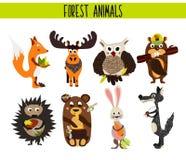 Insieme del fumetto delle alci sveglie di Forest Animals e del terreno boscoso, gufo, lupo, Fox, coniglio, castoro, orso, alce is Fotografia Stock