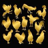 Insieme del gallo dorato su un fondo nero Immagini Stock Libere da Diritti