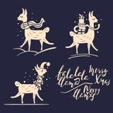 Insieme del lama di Natale Illustrazioni puerili e semplici del lama Immagini Stock Libere da Diritti