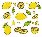 Insieme del limone Immagine Stock