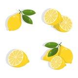 Insieme del limone Fotografie Stock