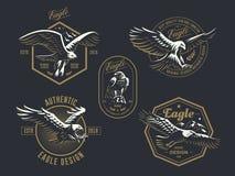 Insieme del logo d'annata con l'aquila illustrazione di stock