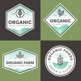 Insieme del logo dell'alimento biologico, distintivi, insegne, emblema con il modello Disegno di pacchetto Pulisca l'alimento Ali illustrazione di stock