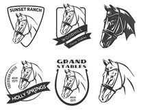 Insieme del logo della testa di cavallo Immagini Stock Libere da Diritti