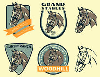 Insieme del logo della testa di cavallo Fotografia Stock