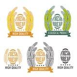 Insieme del logos del negozio del pane e del forno, delle etichette, dei distintivi e della progettazione Fotografia Stock Libera da Diritti