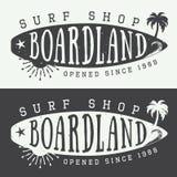 Insieme del logos, delle etichette, dei distintivi e degli elementi praticanti il surfing nello stile d'annata Illustrazione di v royalty illustrazione gratis