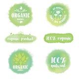 Insieme del logos e dei distintivi organici su fondo acquerello Fotografia Stock