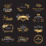 Insieme del logos del lusso dell'oro illustrazione vettoriale