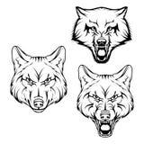 Insieme del lupo Immagini Stock