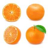 Insieme del mandarino isolato su fondo bianco Immagine Stock Libera da Diritti