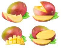 Insieme del mango isolato su fondo bianco Fotografie Stock Libere da Diritti