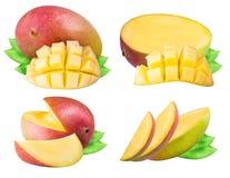 Insieme del mango isolato su fondo bianco Fotografia Stock Libera da Diritti