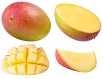 Insieme del mango isolato su fondo bianco Immagini Stock Libere da Diritti