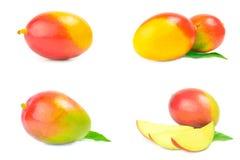 Insieme del mango rosso Immagini Stock
