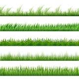 Insieme del modello dell'erba verde Macro confini di vettore isolati su fondo bianco royalty illustrazione gratis