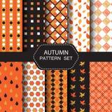 Insieme del modello di autunno Fotografia Stock