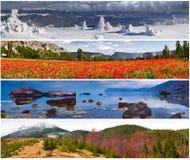 Insieme del paesaggio di 4 stagioni Immagini Stock Libere da Diritti