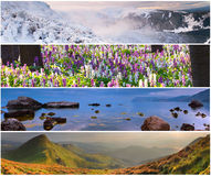 Insieme del paesaggio di 4 stagioni Fotografie Stock Libere da Diritti