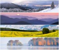 Insieme del paesaggio di 4 stagioni Immagine Stock