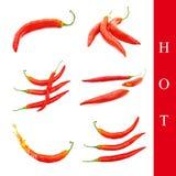 Insieme del pepe caldo Fotografia Stock Libera da Diritti