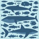 Insieme del pesce Fotografie Stock Libere da Diritti