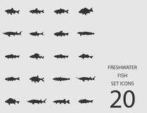 Insieme del pesce di acqua dolce delle icone piane Illustrazione di vettore Illustrazione di Stock